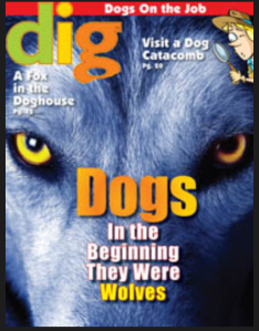 Dig Magazine Jan 2013