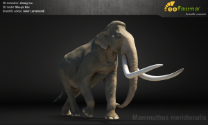 EoFauna - Mammuthus meridonionalis
