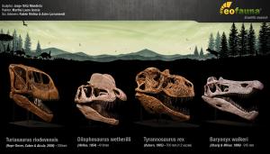 EoFauna - Skulls