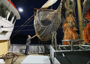 Trawling boat, Stellendam harbor