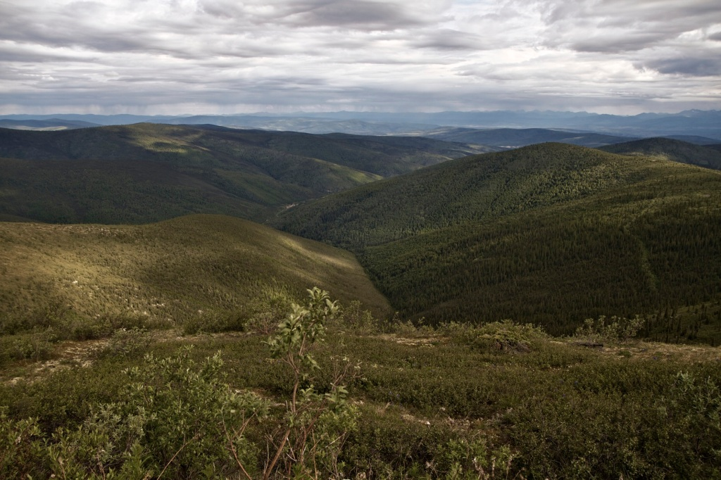 Land near Dawson City
