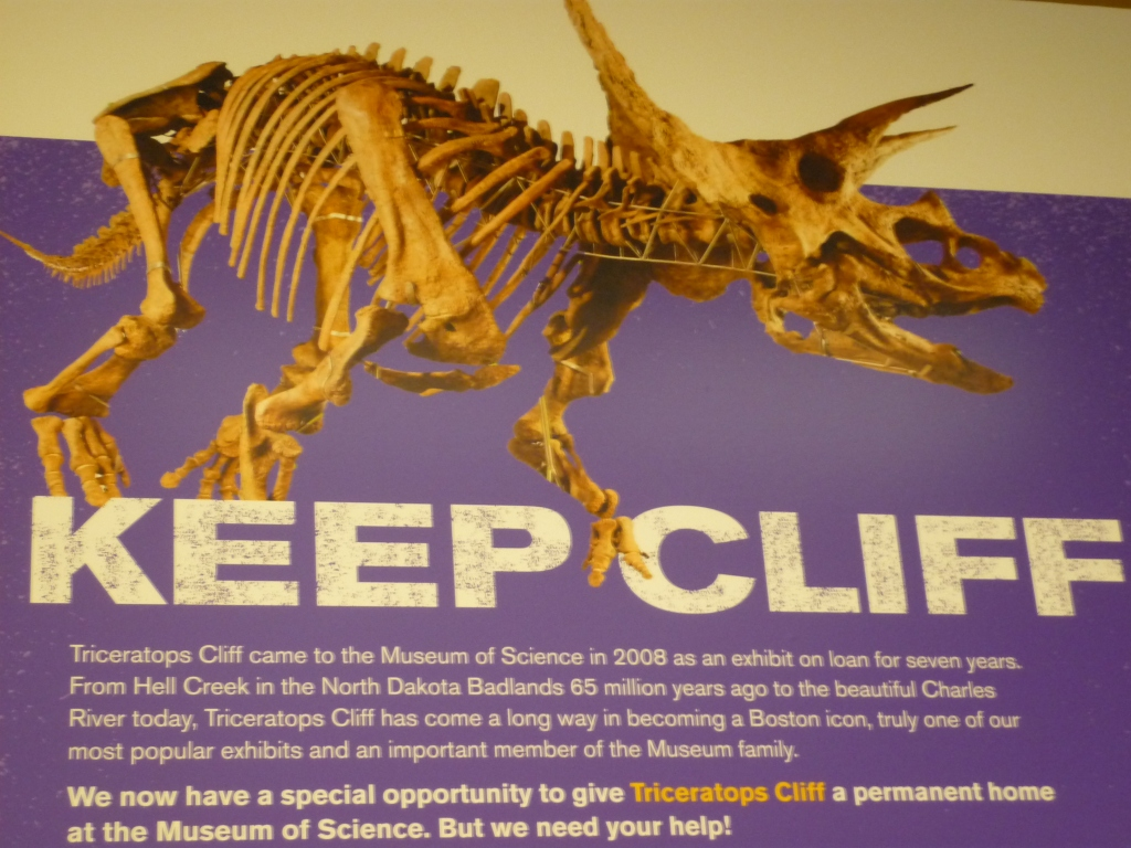 Keep Cliff 1