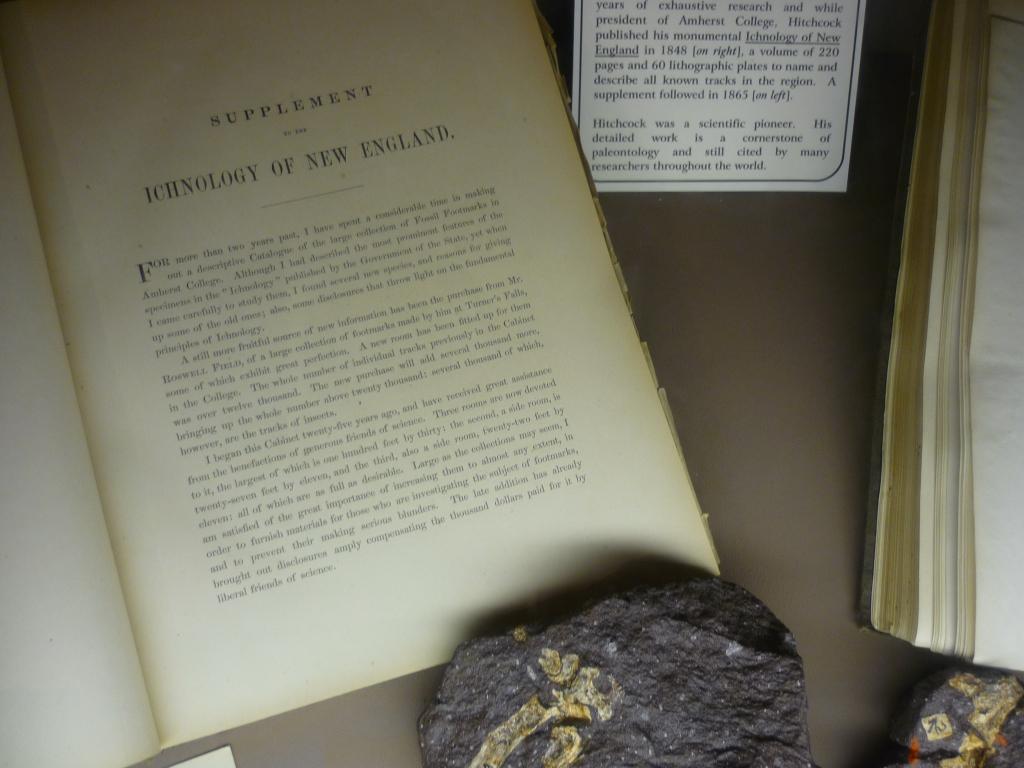 DSP - Supplement Ichnology Hitchcock