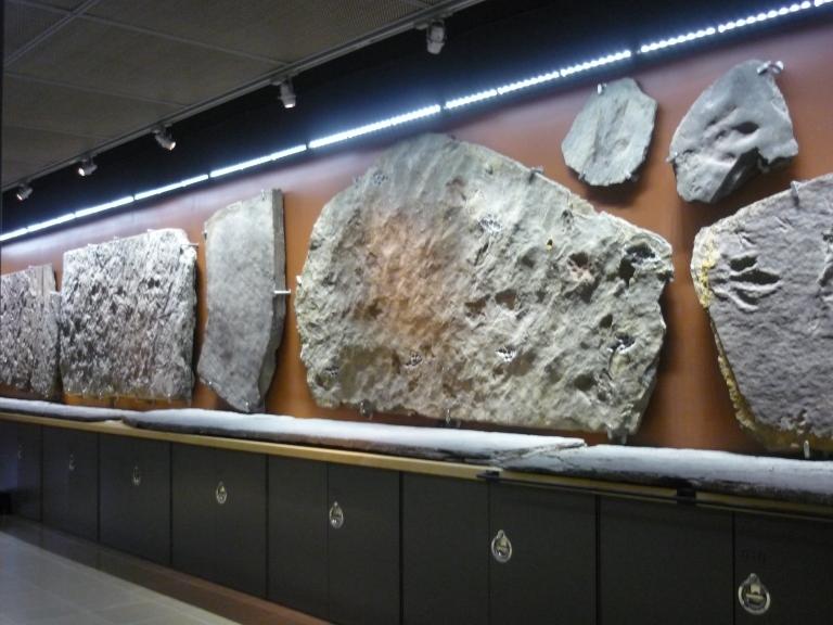 Beneski - great wall of tracks