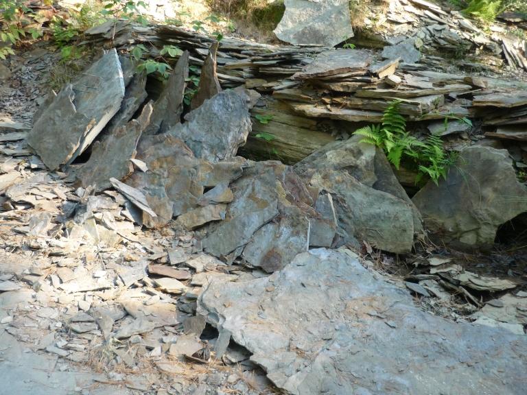 Nash - quarry shale segments