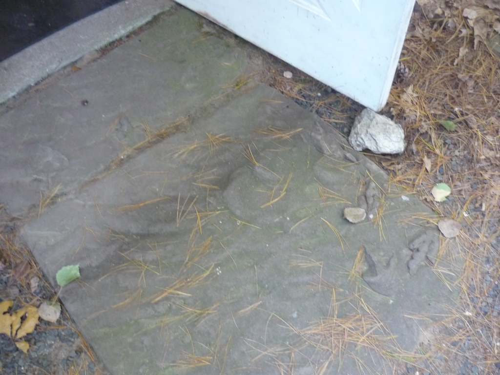 Nash - store - outside door - footprints in stone