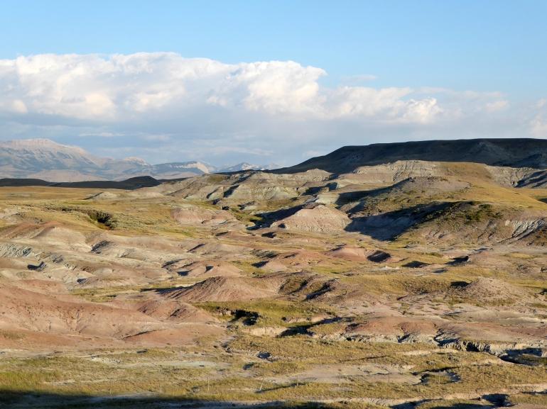 Maiasaura field site Montana