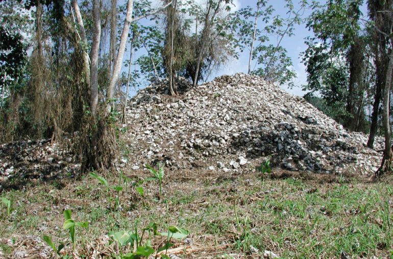 XARP - same pyramid that we were walking over after we cleared off the vegetation