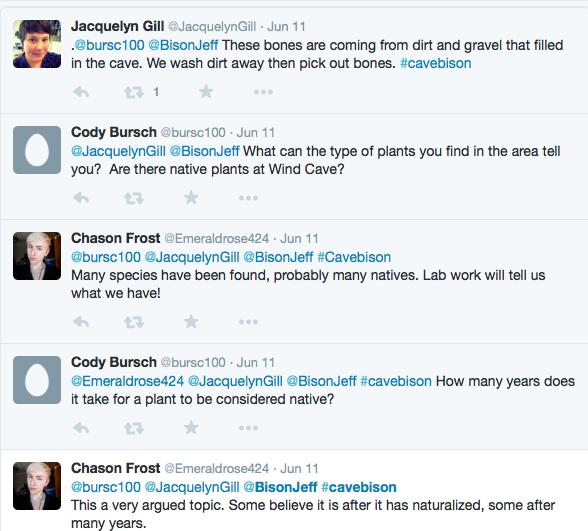 CB - Twitter conversation about plants