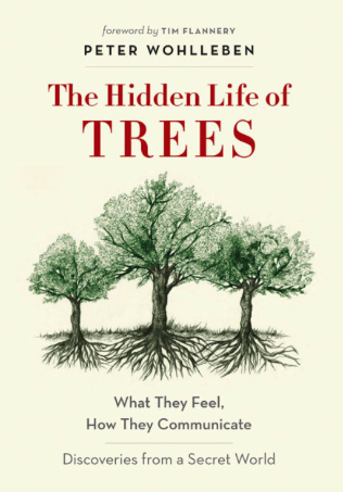 Hidden Life of Trees - Peter Wohlleben