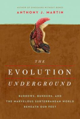 Evolution Underground