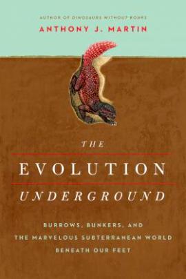 Evolution Underground